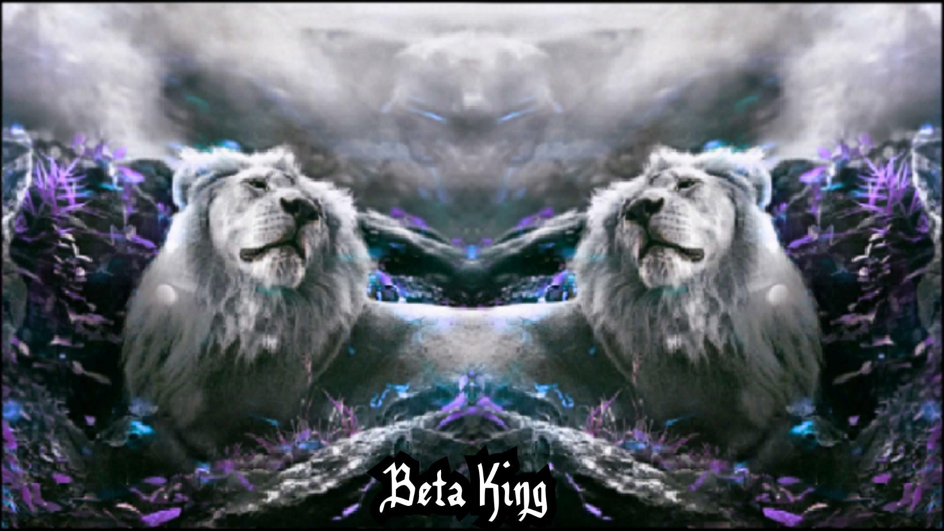 Beta King